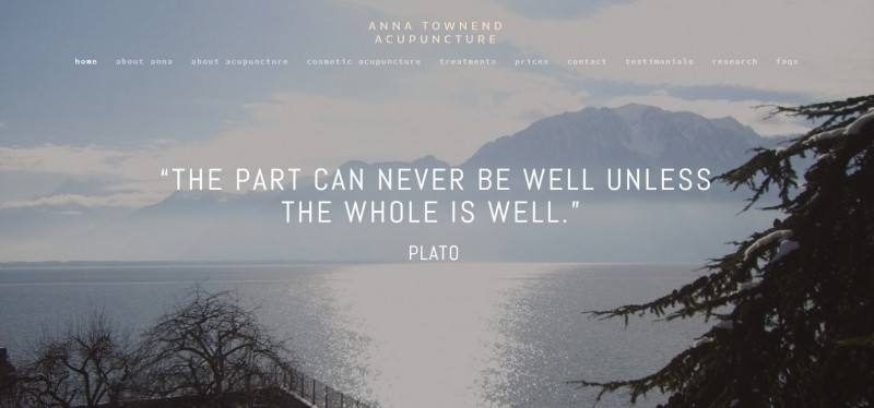 Anna Townend Acupuncture