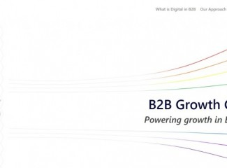 B 2 B Growth Consulting