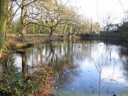 Little Common Stanmore